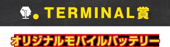 TERMINAL賞